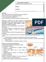 Apostila Prova Parcial - Citologia BLOG