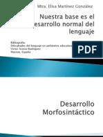 concepto desarrollo morfosintáctico