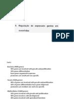 10-Reg Euc.pdf