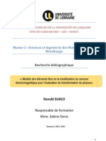 Rapport Bibliographyque Surco Ronald SIMM 2012 2013