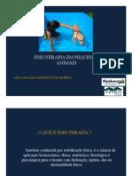 4 - Fisioterapia Em Pequenos Animais