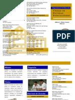 Brochure UEE