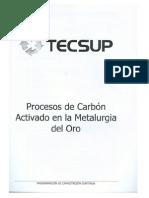 Tecsup-procesos de Carbon Activado