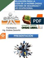 Presentación OHSAS18001-SENA