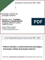 09 -11 - Marina Mendes - Cuidados Maternos _bowlby