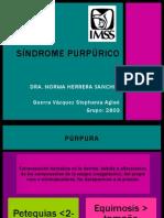 13.purpuras1