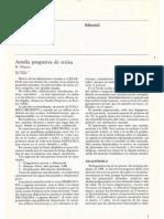 Oftalmologia Retina Atrofia Progresiva 11307064v12n1p7