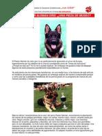 Pastorale Man PDF
