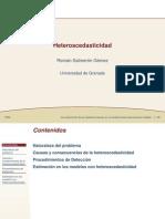 Heteroscedasticidad-Román