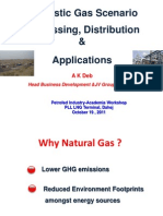 Domestic Gas Scenario Processing, Distribution & Applications