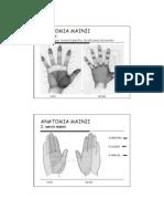 Examenul Clinic Al Mainii-lp