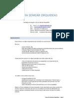 SEMEANDO ORQUIDEAS