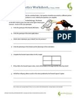 Answer Key Genetics Workpacket | Dominance (Genetics) | Zygosity