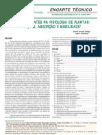 Micronutriente Nas Plantas