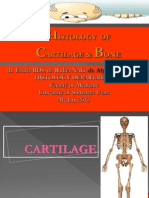 Lecture Cartilage and Bone
