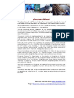 Phosphate Hideout