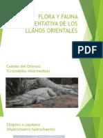 Flora y Fauna Representativa de Los Llanos Orientales