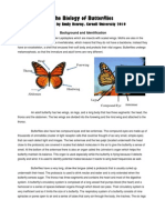 Emily Kearny Biology of Butterflies