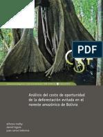 CSF_Malky_Leguia_Ledezma.pdf