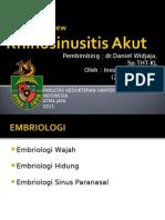 3.LitView Rhinosinusitis Akut
