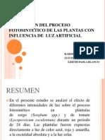 Proyecto Luz Artificial