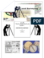 Surveying Report