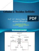 Sistema linfóide - rosyana