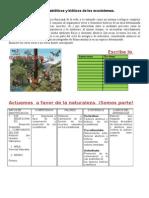 Factores abióticos y bióticos de los ecosistemas