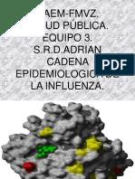 Cadena Epidemiologica de La Influenza