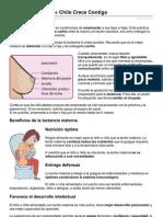 crececontigo.cl-Lactancia_Materna_«_Chile_Crece_Contigo