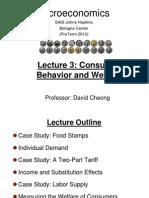 Microecnomics& consumer behavior