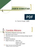 Jamur-Jamur Subkutan