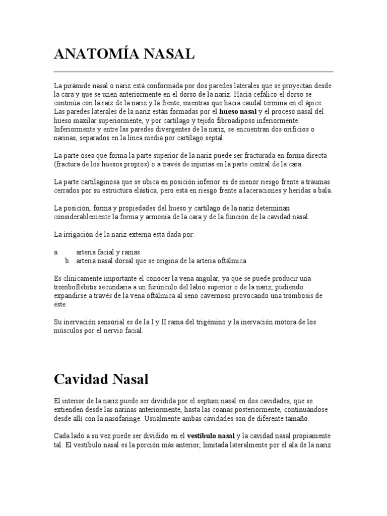 ANATOMÍA NASAL.doc