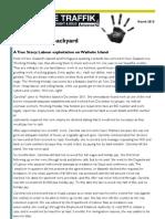 STTANZ newsletter march 2013.pdf