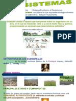 11. Principales Ecosistemas