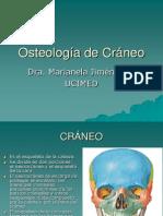 Osteologia de Craneo
