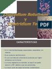 Clostridium Botulinum 3