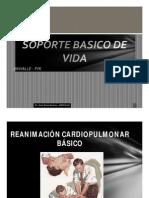 Soporte Basico de Vida Univalle 2012 - II