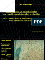 92356289 Tejido Adiposo Ppt 2012 Actualizado