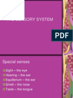 Lab 7 - Sensory System