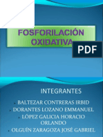 _FOSFORILACION_OXIDATIVA