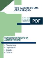 PRINCÍPIOS BÁSICOS DE UMA ORGANIZAÇÃO.ppt