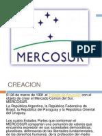 Mercosur Expo
