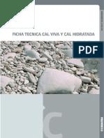 165585 FICHA Cal.pdf