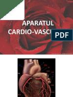 Aparatul Cardio Vascular