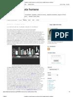 Ciudades a escala humana_ La ciencia de las ciudades desde lo cotidiano.pdf