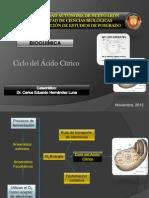 Ciclo Del Acido Citrico_exp