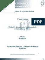 Unidad 1. Antecedentes Historicos de La Criminalidad en Mexico