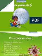 44nervioso-120223085212-phpapp02