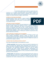 info sobre el peeling.pdf